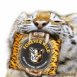 foreverwild tiger