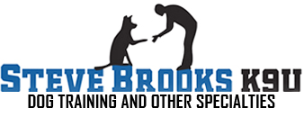 Pet World Insider Radio Segment – Steve Brooks – Professional Dog Training – Training Your Dog For A Newborn + Training Techniques For Families + So Much More