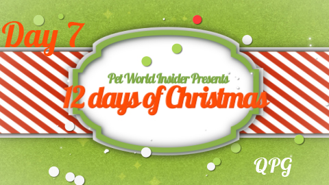 Twelve Days of Christmas – Day Seven – Pet Product TV – Go Dog – Plush Squeaky Toys with Chew Guard