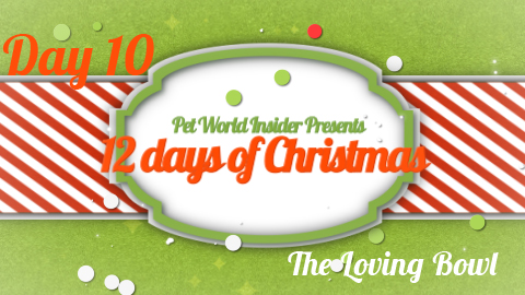 Twelve Days of Christmas – Day Ten – Pet Product TV – The Loving Bowl – Flat Faced Pet Bowls