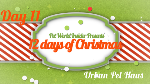 Twelve Days of Christmas – Day Eleven – Pet Product TV – The Cat Wave – Urban Pet Haus