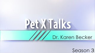 Pet X Talks – Dr. Karen Becker – Pillars of Pet Health – A Balanced Resilient Immune System