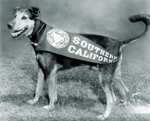 Pet World Insider Guest Article –  George Tirebiter – USC Mascot by Kate Kelly – America Comes Alive