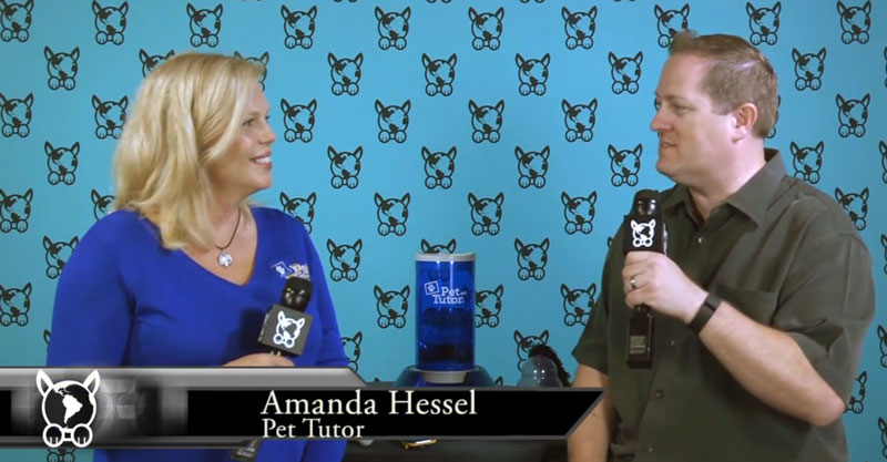 Behind The Product – Amanda Hessel – Pet Tutor by Smart Animal Training Systems
